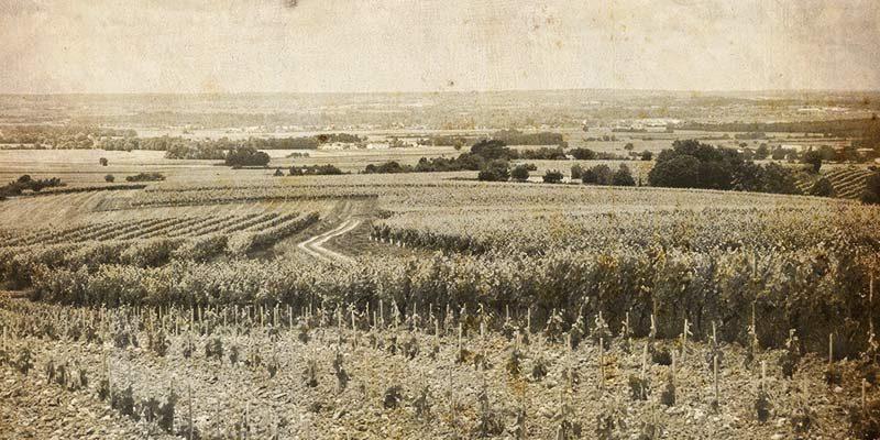 Jules-Gautret-cognac-notre-histoire-1895-decouvertes